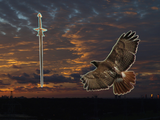 Sword and Hawk